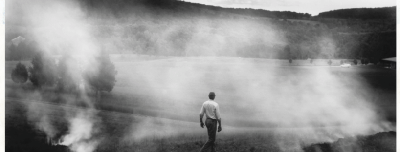 Sally Mann image The Turn (2005)