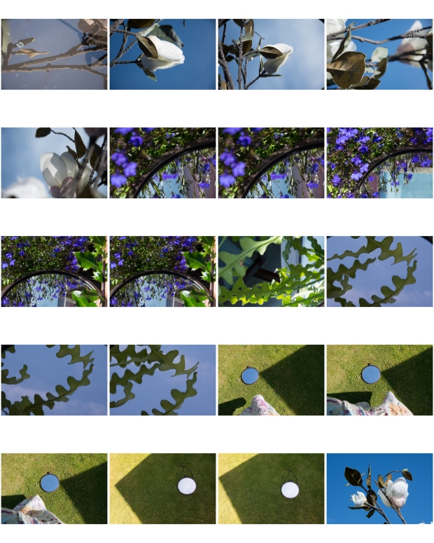 ContactSheet-001 mirrors flowers mother