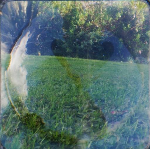 Experimental landscape, 2018, Julie Dawn Dennis