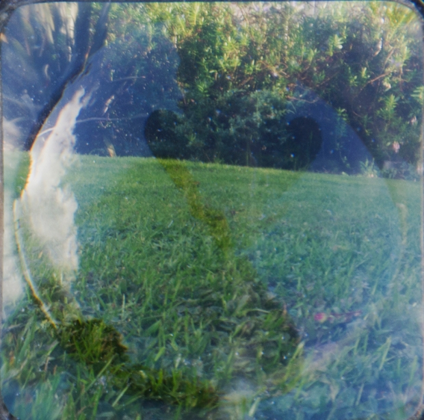 Experimental landscape photo