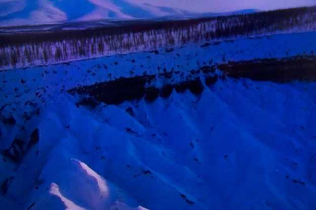 Julie Dawn Dennis - TV Land #5 [Photograph]