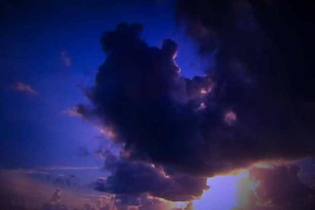 Julie Dawn Dennis - TV Land #9 [Photograph]