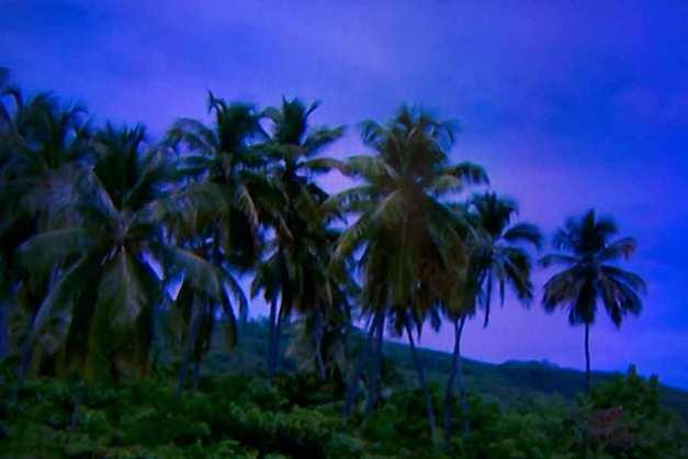 Julie Dawn Dennis - TV Land #2 [Photograph]